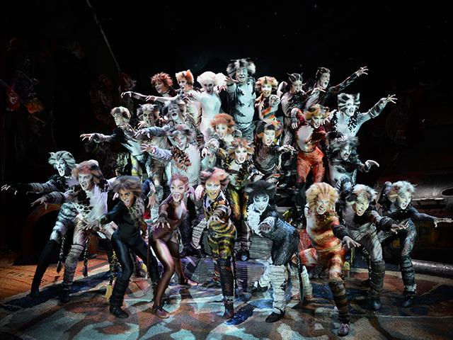 Cats_Broadway