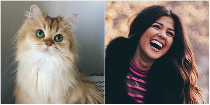 Eliza-Cats